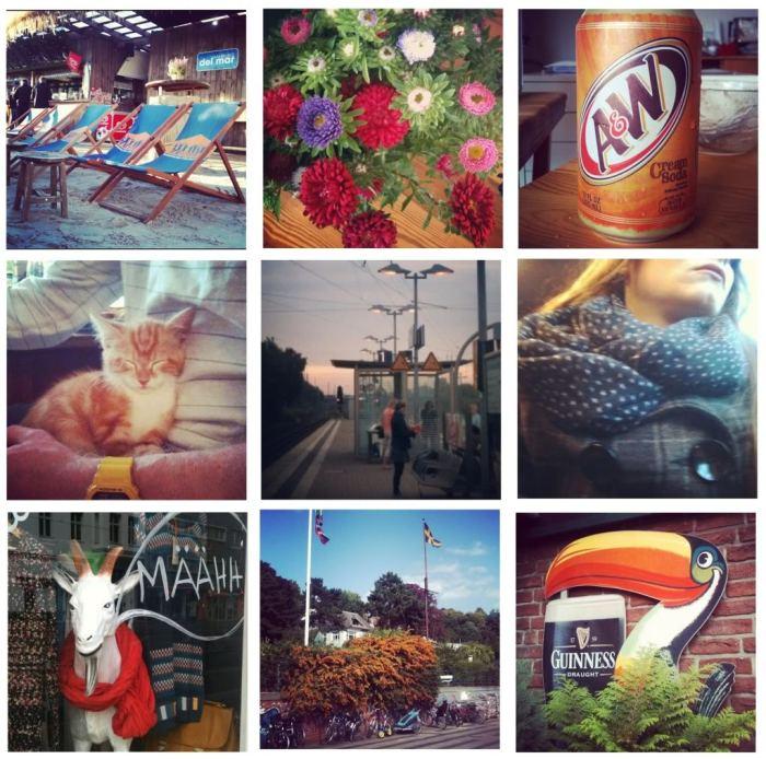 instagram_zps8832cd7b.jpg