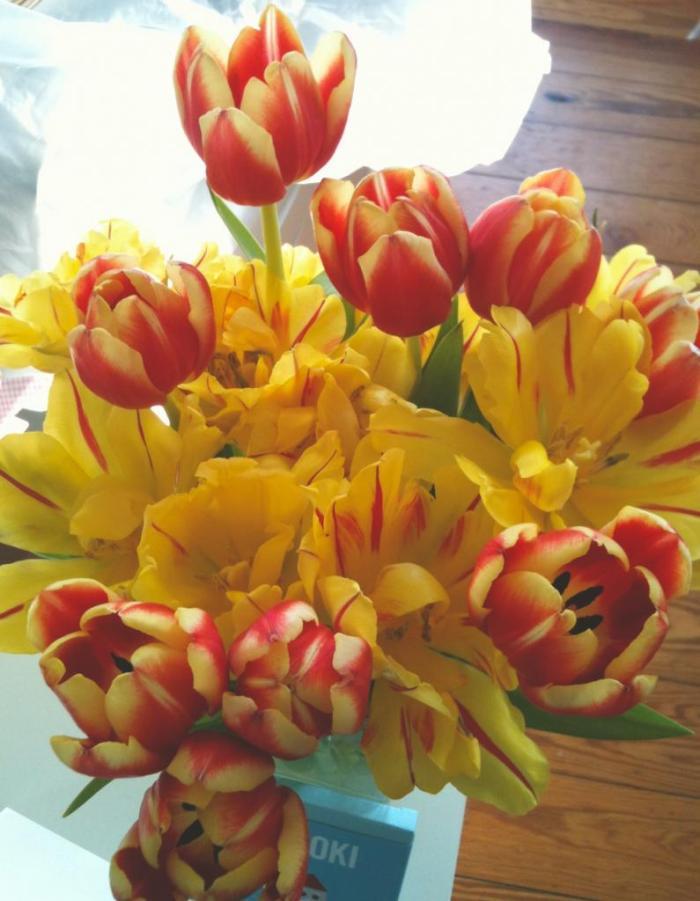 flowers_zpsa2456629